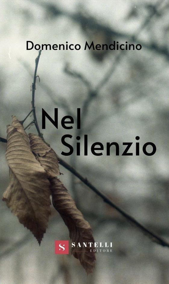 """""""Nel Silenzio"""": Domenico Mendicino e il suo esordio editoriale"""