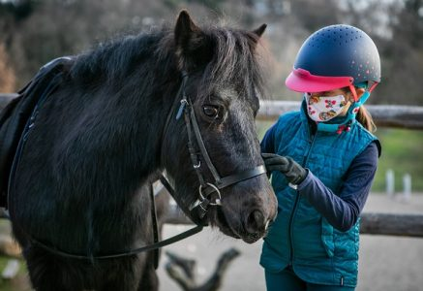 Tuscia Experience: Escursioni a cavallo in Tuscia, un viaggio a ritmo lento nel cuore del territorio e della sua storia.