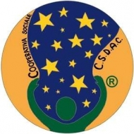 Centro per lo Sviluppo delle Abilità Cognitive Cooperativa Sociale a.r.l. onlus